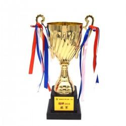 現貨獎盃 mc30z - 獎盃及獎座
